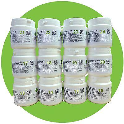 Schuessler Schüssler Salze (SCHÜSSLER SALZE SET 2 (13-24) 12 x 400 Tabletten glutenfrei PZN 08011173)