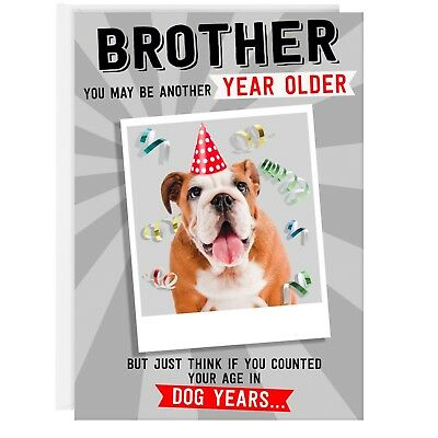 BROTHER BIRTHDAY CARD - Funny Humour Joke Old Dog Age REAL PHOTO ATTACHED
