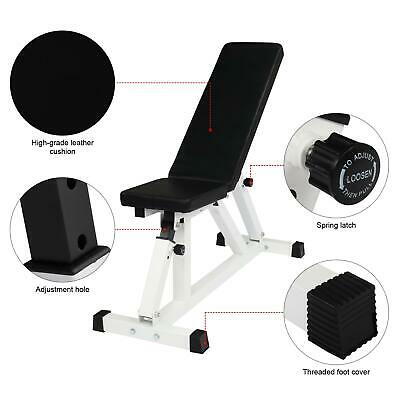 Adjustable Weight Bench for Lifting Dumbbell Workout Exercis