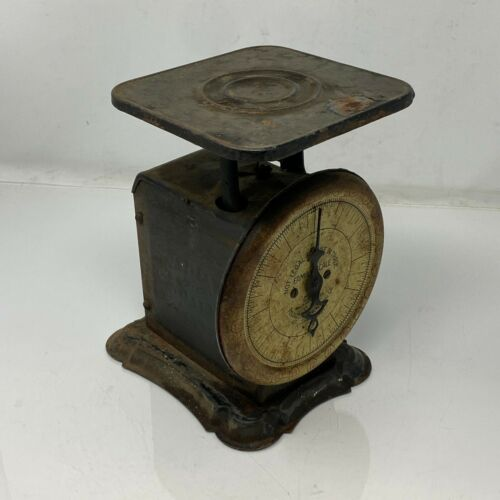 Vintage Pelouze Manufacturing Family Scale In Working Condition