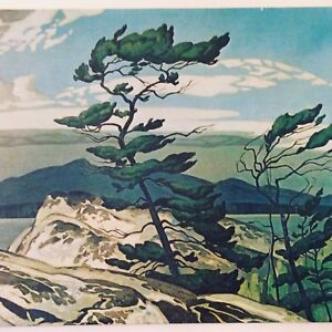 White Pine by AJ Casson Canvas Print