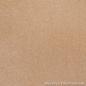 Light-Beige-Action-Backed-Twist-Pile-Carpet-Lounge-Bedroom-Stairs-Cheap-Roll