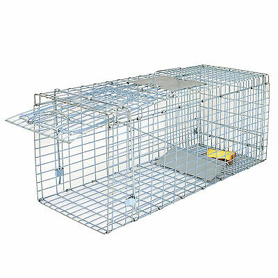 Animal Trap | 32″x12.5″x12″ Large Steel Cage Spring Loaded Humane Rodent Possums Hunting