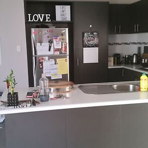 ROOM 4 RENT! !! AWESOME HOUSEMATE WANTED Westminster Stirling Area Preview
