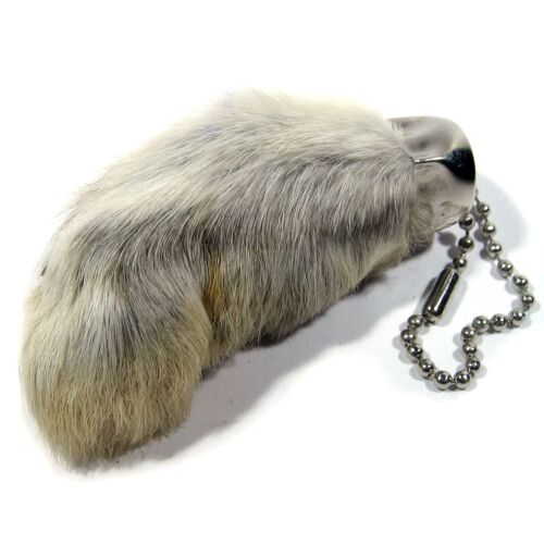 Real Rabbit Foot Lucky Keychain Vraie Patte de Lapin Chanceuse Natural ...