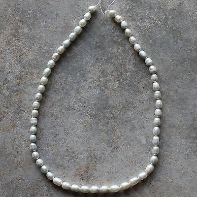 "Aqua Blue Genuine Freshwater Pearl Rice Loose Beads Strand 14"""