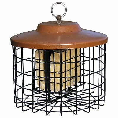 Squirrel Cakes - Squirrel-X Squirrel Proof Suet Bird Feeder, 2 Suet Cake Capacity, Brown