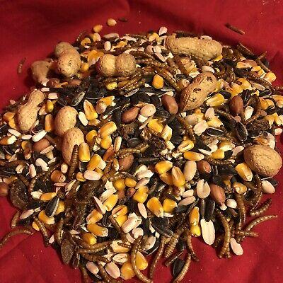 Squirrel Food Mealworm Mix Chipmunk 400g Sunflower Monkey Nuts Corn Wild Bird