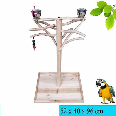 Parrot Tree Bird Stand Wood Bird Stand Parrot Stand Tree Toy Play Gym Center Hot