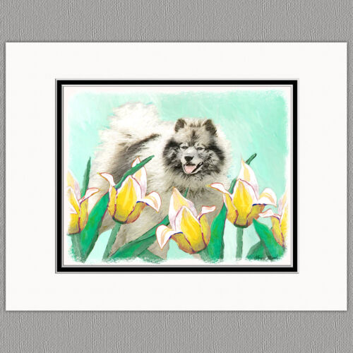 Keeshond in Tulips Original Art Print 8x10 Matted to 11x14