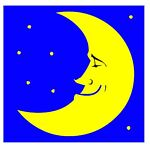 Bleu Moone Vintage