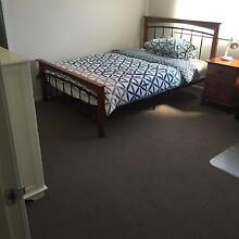 BRAND NEW HOUSE SHARE ACCOMODATION 7 Min Walk DEAKIN UNI BURWOOD Wantirna Knox Area Preview