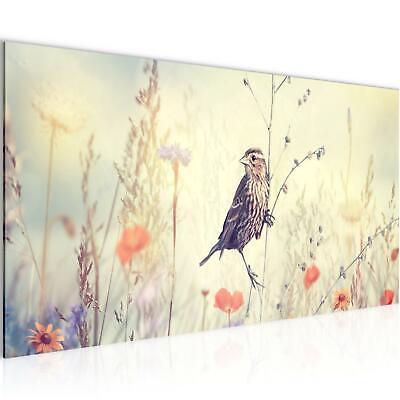 Vogel Leinwand Kunst (WANDBILDER XXL BILDER Blumen Vogel VLIES LEINWAND BILD KUNSTDRUCK 010612P)