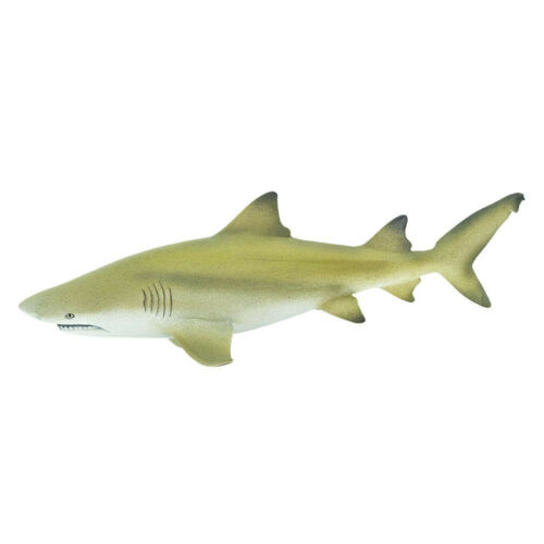 Lemon Shark Ocean Figure Safari Ltd 100097 NEW Toys Educational