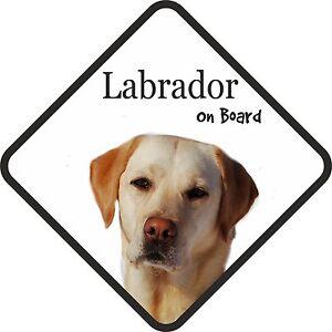 Blonde Golden Labrador Dog On Board Car Sign With Sucker Sticker Decal