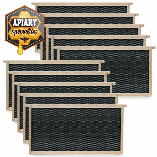 Beehive 10 Frame Add-On 10 Deep Replacement Frames Beekeeping