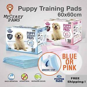 Puppy Training Pads / Kitten Training Pads Indoor Toilet 60x60cm Sydney City Inner Sydney Preview