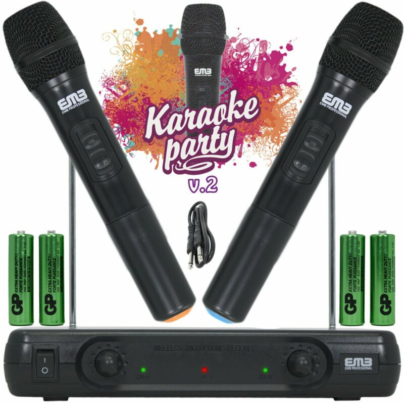 Professional Wireless Microphone System Dual Handheld 2 x Mic Cordless Receiver