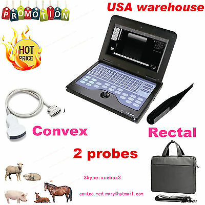 Vet Veterinary Ultrasound Scanner For Equinecowssheep Use Rectal Convex Probe