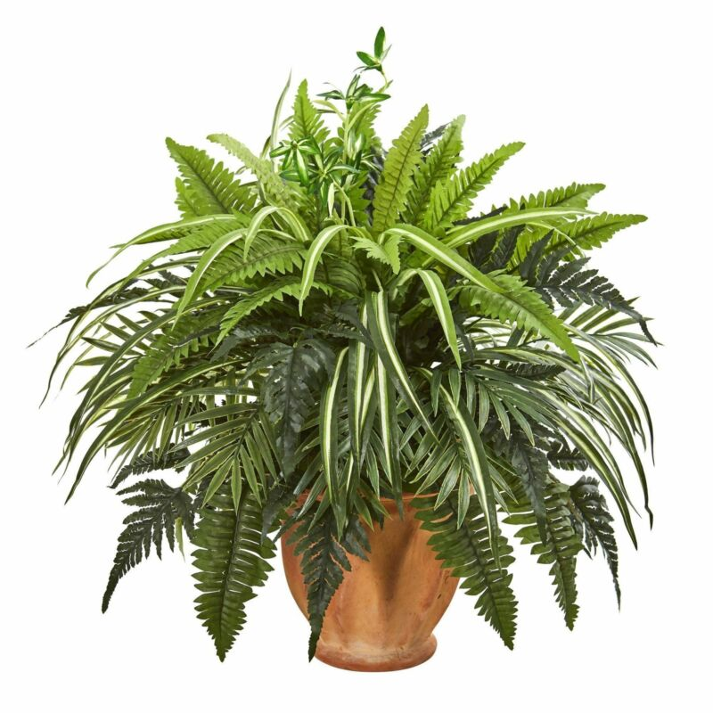 """23"""" Mixed Greens and Fern Artificial Plant in  Terra Cotta Planter"""