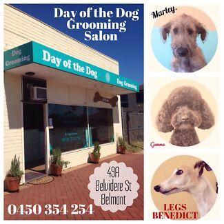 Day of the Dog. Grooming Studio Belmont Belmont Belmont Area Preview