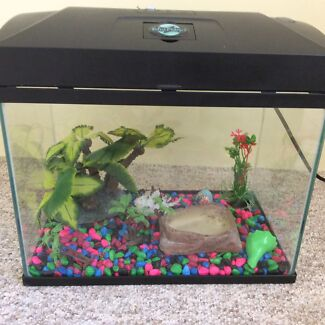 Crazy Crab / Fish Tank & Accessories Kinross Joondalup Area Preview