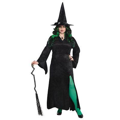 Witch Basic Halloween Black Long Adults Womens Ladies Fancy Dress Costume