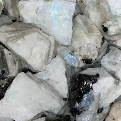 3000 Carat Lots of Natural Rainbow Moonstone Rough + a Nice FREE faceted Gems