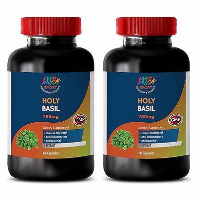 Antioxidant Formula - Holy Basil 745mg - Holy Basil Herb Capsules 2B