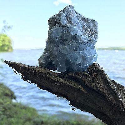 Celestite Crystal Druze Specimen (1) Specimen ~ Large Size