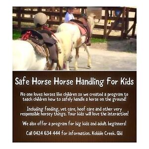 Horse Handling Program For Kids and Beginners Dayboro Pine Rivers Area Preview