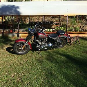 1994 harley softail good condition Joondalup Joondalup Area Preview