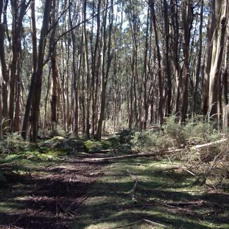 Hiking/camping buddies Narre Warren Casey Area Preview