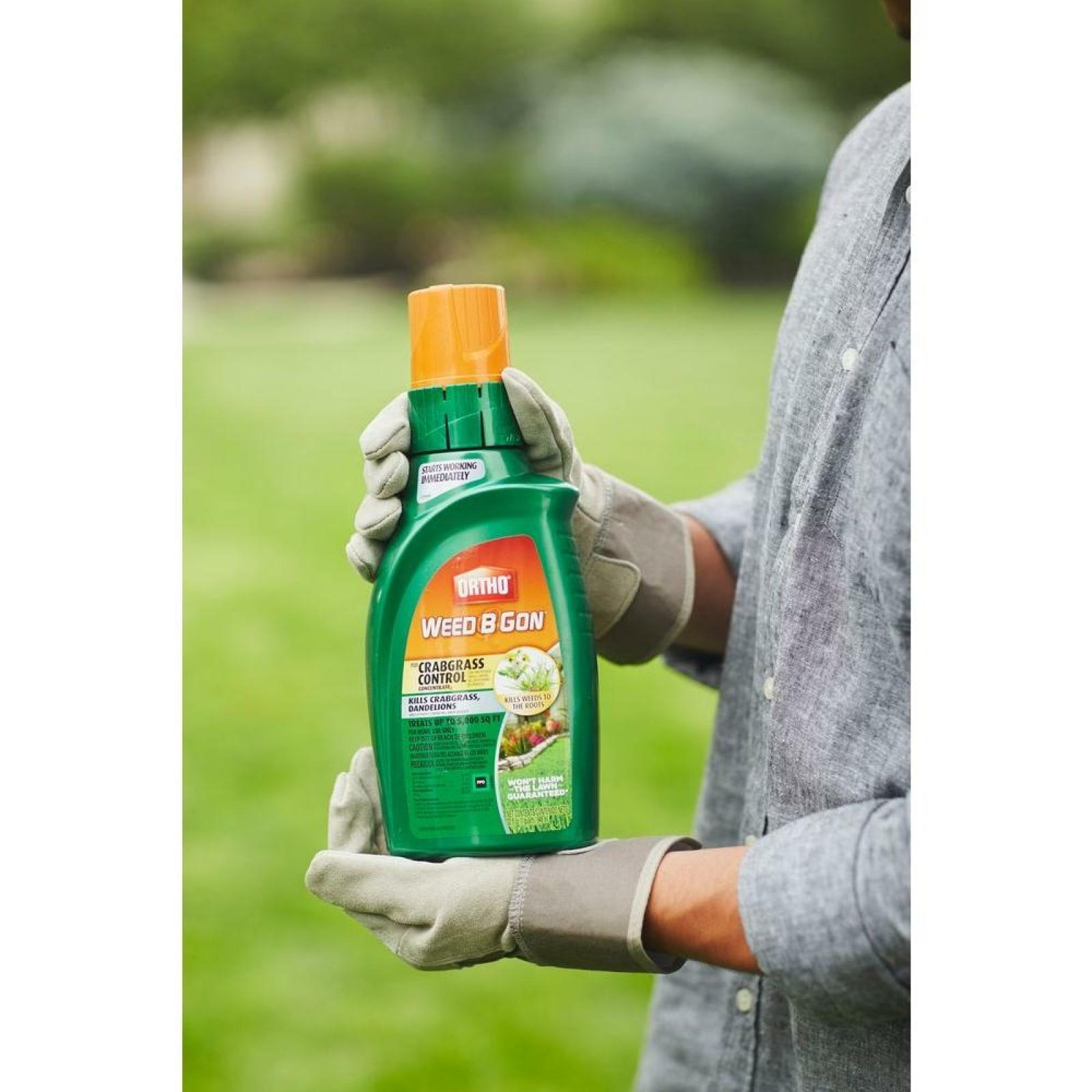Details about Ortho Weed B Gon Max Plus Crabgrass Control Concentrate Lawn  Weed Killer 32 oz