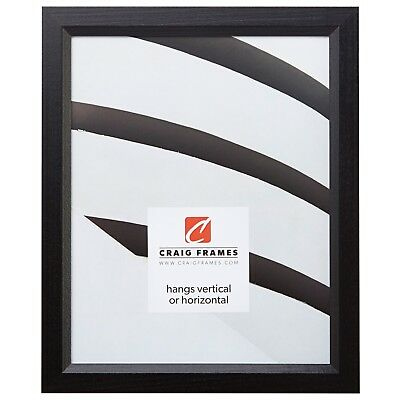 "Craig Frames Satin Black Picture Frames & Poster Frames, .8"" Wide, Solid Wood"