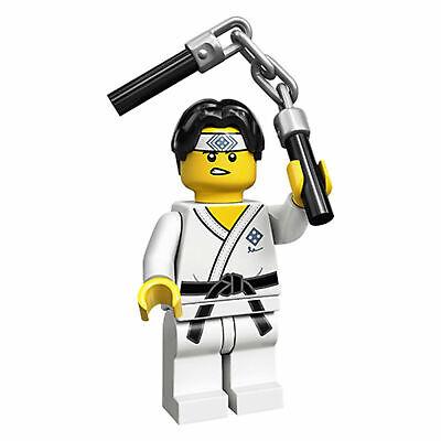 Lego Series 20 Minifigures Karate Martial Arts Boy 71027