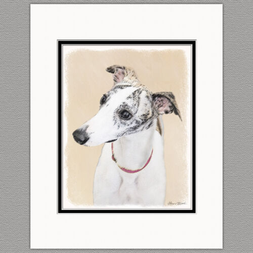 Whippet Dog Original Art Print 8x10 Matted to 11x14