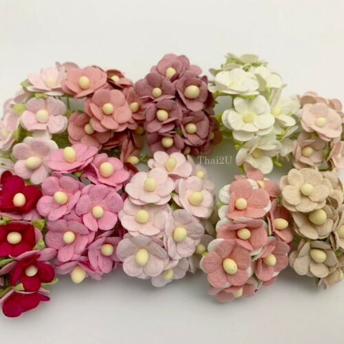 "1/2"" -1.5cm Mixed 100 pcs 10 Cottage flower Wedding Scrapbook (00/SpecialsA-S10)"