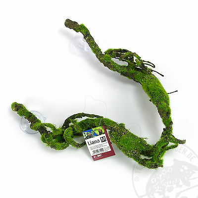 Regenwaldliane Urwaldliane Liana M für das Terrarium Vivarium
