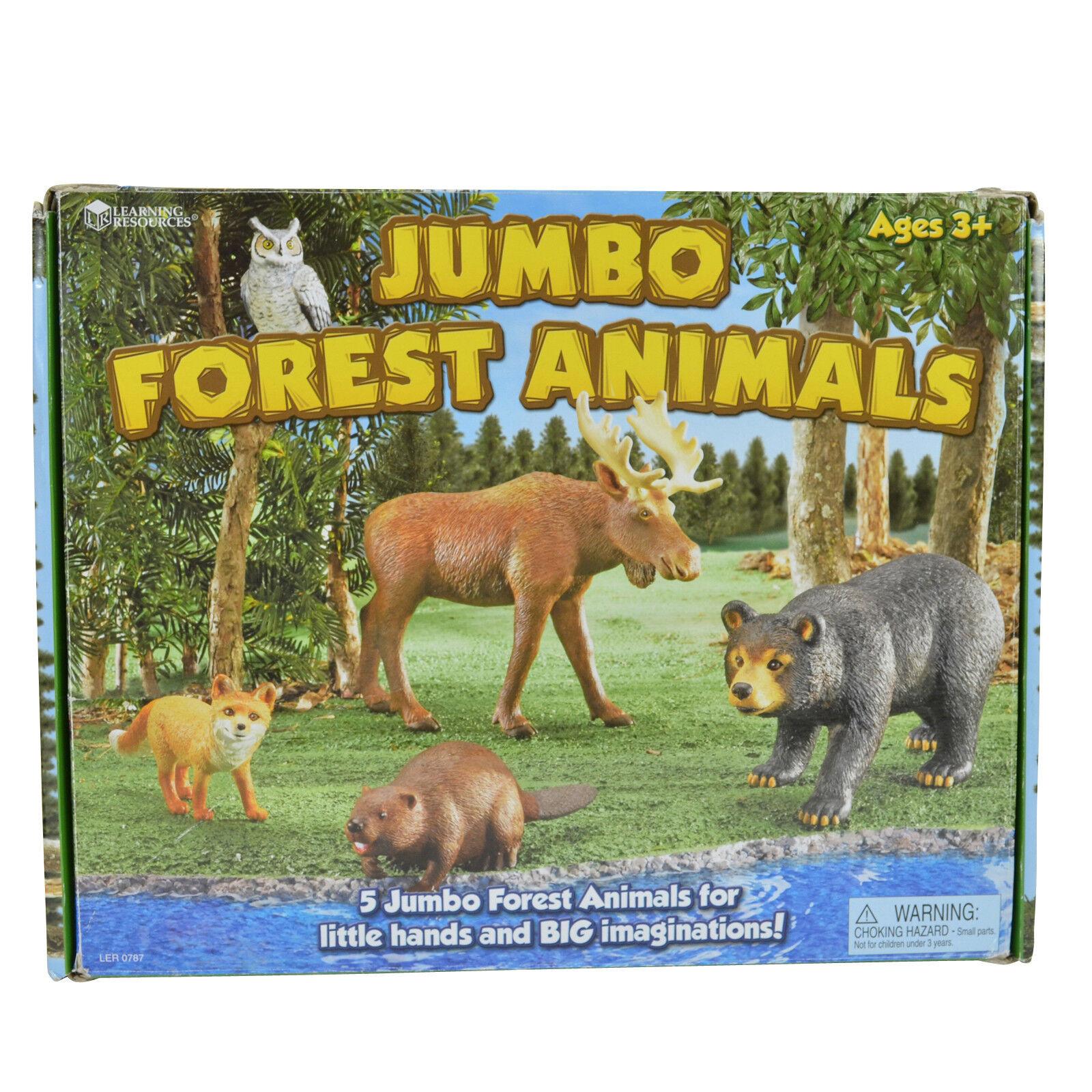 Jumbo Forest Animals in Box S/5 for Toddler Boy or Girl | eBay