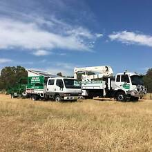 ****DENILIQUIN TREE SERVICE**** Deniliquin Murray Area Preview