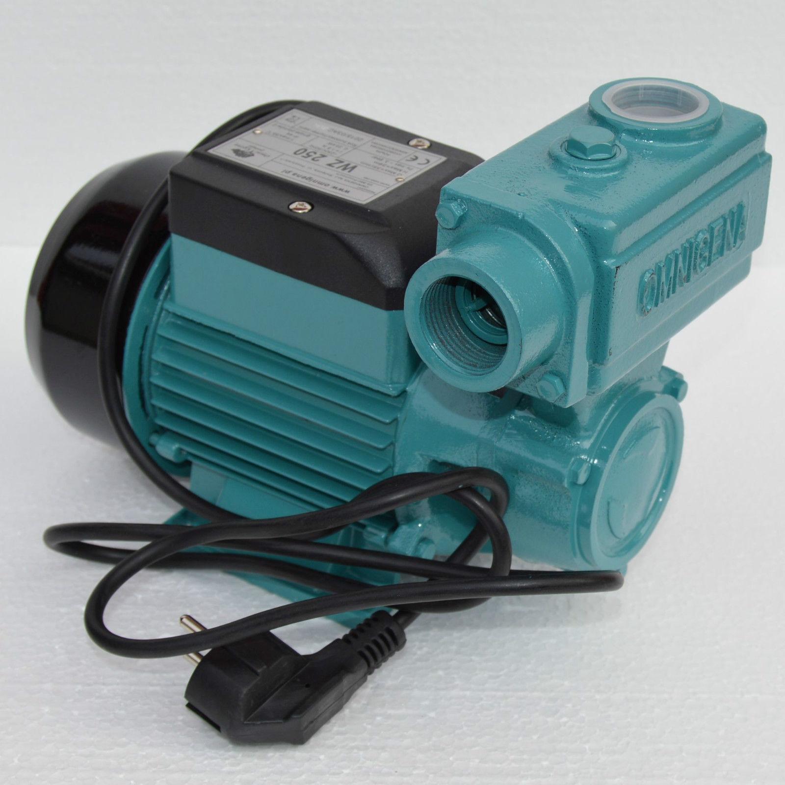 Kreiselpumpe Gartenpumpe 250 Watt 2100 L/h 3,9 bar