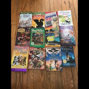 Young reader chapter book lot