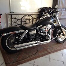 Harley Davidson Fat Bob. As New Redwood Park Tea Tree Gully Area Preview