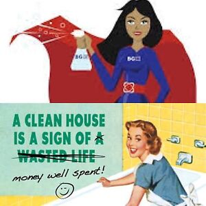 SUPERWOMEN CLEANER FOR YOUR RESCUE Nollamara Stirling Area Preview