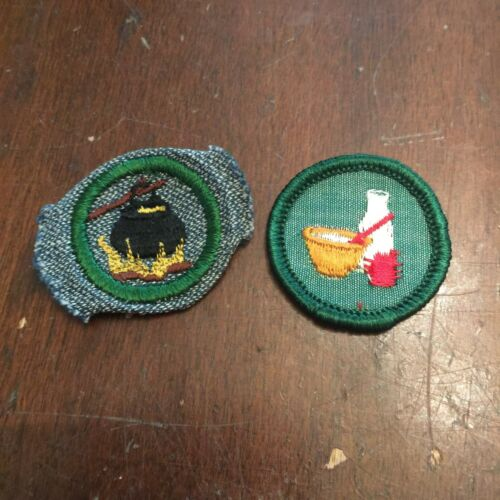 Vintage Girl Scout Merit Badge Cloth Patch Lot of 2