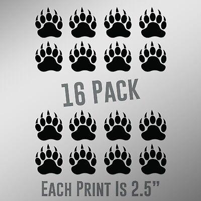 Bear Paw Prints 16-Pack  