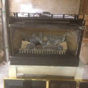 Propane fireplace insert for sale