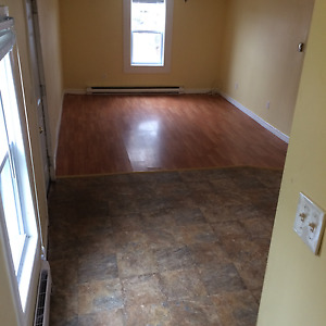 2 bedrrom Apartment for rent - West Side