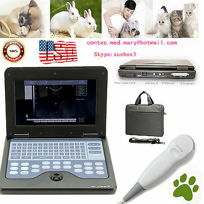 Veterinary Laptop Ultrasound Scanner Machine Vet Micro Convex Probedogcatpet